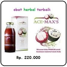 Pengobatan Herbal Demam Tifoid