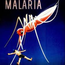 Cara Alami Mengobati Penyakit Malaria